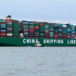 Al igual que las mascarillas, el régimen comunista chino ya está llevándose los alimentos del resto del mundo