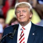 """""""Trump será su presidente mucho antes de 2024"""", reveladora afirmación del empresario Mike Lindell [VIDEO]"""