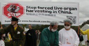 Sustracción forzada de órganos: 4 médicos chinos le robaron los órganos a una mujer en una ambulancia
