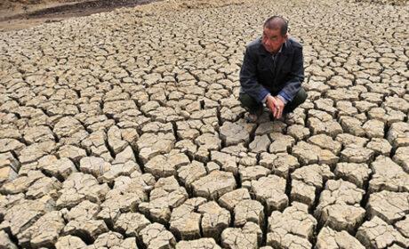 Tras desastres naturales, China enfrenta una crisis alimentaria sin precedentes