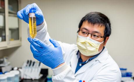 Científicos descubren un anticuerpo que 'neutraliza' el coronavirus de Wuhan