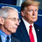 """""""Su brazo lanzador es mucho más preciso que sus pronósticos"""": Trump criticó a Fauci por recomendar el confinamiento"""