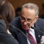 AL DESCUBIERTO: Senador demócrata REVELÓ el objetivo de LA FARSA de la destitución a Trump