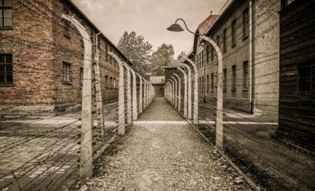 La resurrección del Tercer Reich en América: un nuevo movimiento nazi que demoniza a los blancos