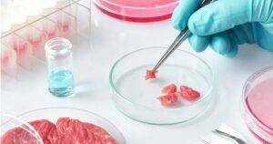 """Agenda 2030 en Argentina: Primera """"degustación"""" de """"carne de laboratorio"""""""