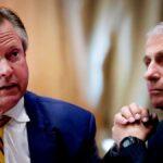 Fauci acorralado cuando un senador lo acusa de estar involucrado en la creación del virus PCCH [VIDEO]