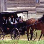Cómo los Amish logran la inmunidad de rebaño contra el Covid y llevan una vida normal